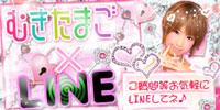 むき堺LINE200-100